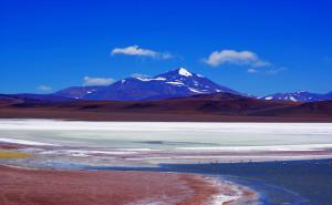 Laguna Brava : la nature au cœur des Andes