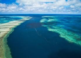 Grande barrière de corail : les plus grands récifs coralliens du monde