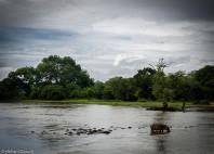Parc national de la Garamba