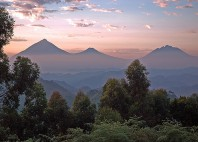 Parc national des Virunga