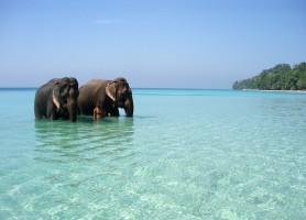 Îles Andaman : la perle longtemps restée cachée
