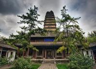 La pagode de l'oie sauvage