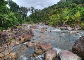 Parc national de Masoala: le plus grand parc de Madagascar