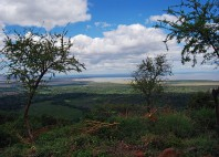 Parc national du lac Manyara