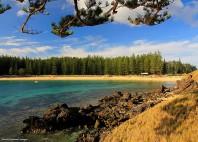 L'île Norfolk