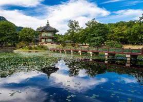 Palais Gyeongbokgung : la resplendissante demeure royale