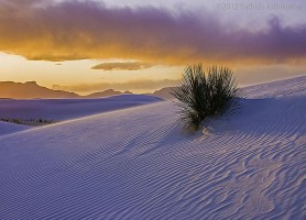 White Sands national monument: le plus grand désert de sable blanc