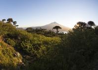 Parc national Conguillío