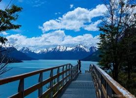 Lago Argentino : la valeureuse cité glacière