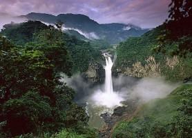 Parc national Yasuni: l'escapade amazonienne