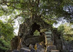 Beng Mealea: admirez le charme tenace d'un précieux temple perdu