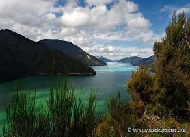 Marlborough Sounds: les fantastiques vallées isolées