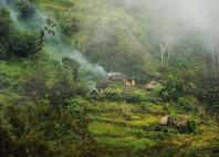 Vallée du Baliem