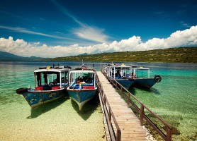 Île Menjangan: l'extraordinaire royaume des eaux!