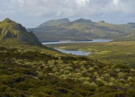 Îles sub-antarctiques de Nouvelle-Zélande : les captivantes îles du Pacifique