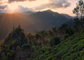 Ella: découvrez le beau petit village sri-lankais