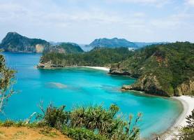 Archipel d'Ogasawara: découvrez ce beau petit joyau japonais