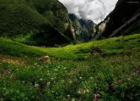Parc national Nanda Devi