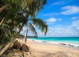 Plage de Hikkaduwa: pour un séjour de rêve au Sri Lanka