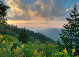Parc national des Great Smoky Mountains: le plus visité au monde