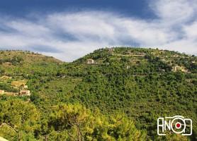 Réserve naturelle du Chouf : la plus grande réserve naturelle du Liban