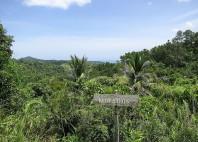 Parc national Alejandro de Humboldt