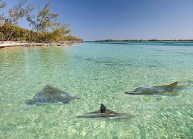 Eleuthera: une extraordinaire destination des Bahamas