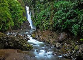 Jardins de la cascade La Paz : un site admirable