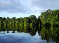 Parc national de Tortuguero