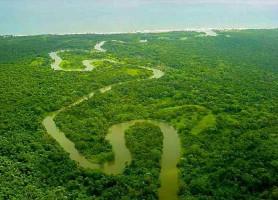 Río Plátano: un espace naturel séduisant