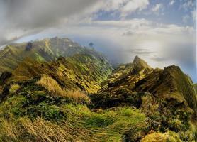 Île Gough: vivez une aventure extraordinaire