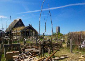 Foteviken: découvrez une réserve unique en son genre
