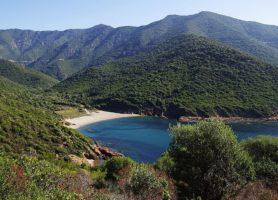 Réserve naturelle de Scandola: un flamboyant écosystème
