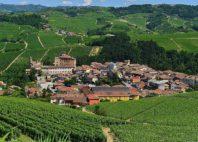 Paysage viticole du Piémont