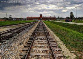Auschwitz: l'indispensable devoir de mémoire