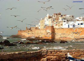 Essaouira: au cœur d'une radieuse ville marocaine