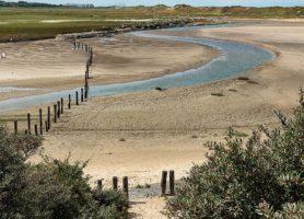 Réserve naturelle Het Zwin: un site naturel merveilleux