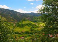 Parc de Šargan-Mokra Gora
