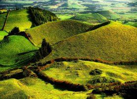 Île du Pico: une escale au cœur d'un splendide espace de bonheur