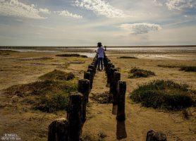 Îles Wadden: de merveilleux eldorados marins