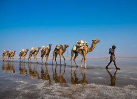 Désert Danakil: au cœur d'un somptueux désert unique
