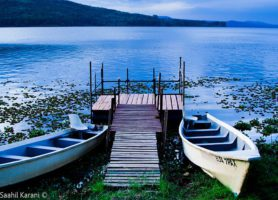 Lac Naivasha: découvrez cette référence ornithologique