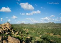 Plateau de Laikipia
