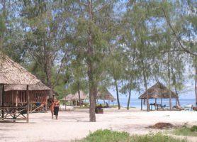 Mbudya: découvrez ce paradis aux attractions exceptionnelles