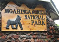 Mgahinga