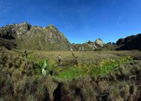 Monts Rwenzori