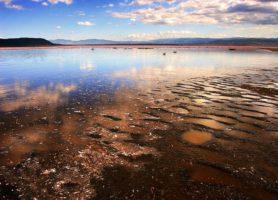 Lac Nakuru: un merveilleux étang incontournable