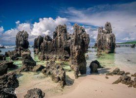 Nauru : découvrez ce merveilleux bout de terre