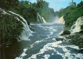 Parc national d'Ivindo: le charme au cœur de la nature