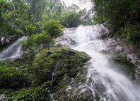 Parc national de Korup